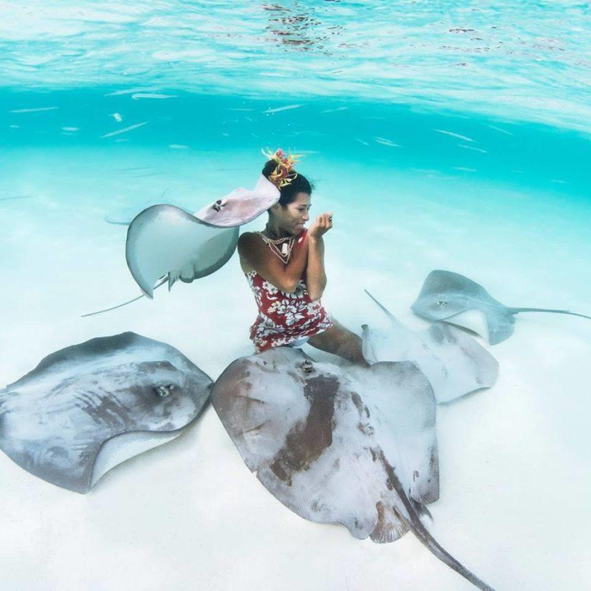 Sting Ray Etiquette - Ocean Defender Adventures